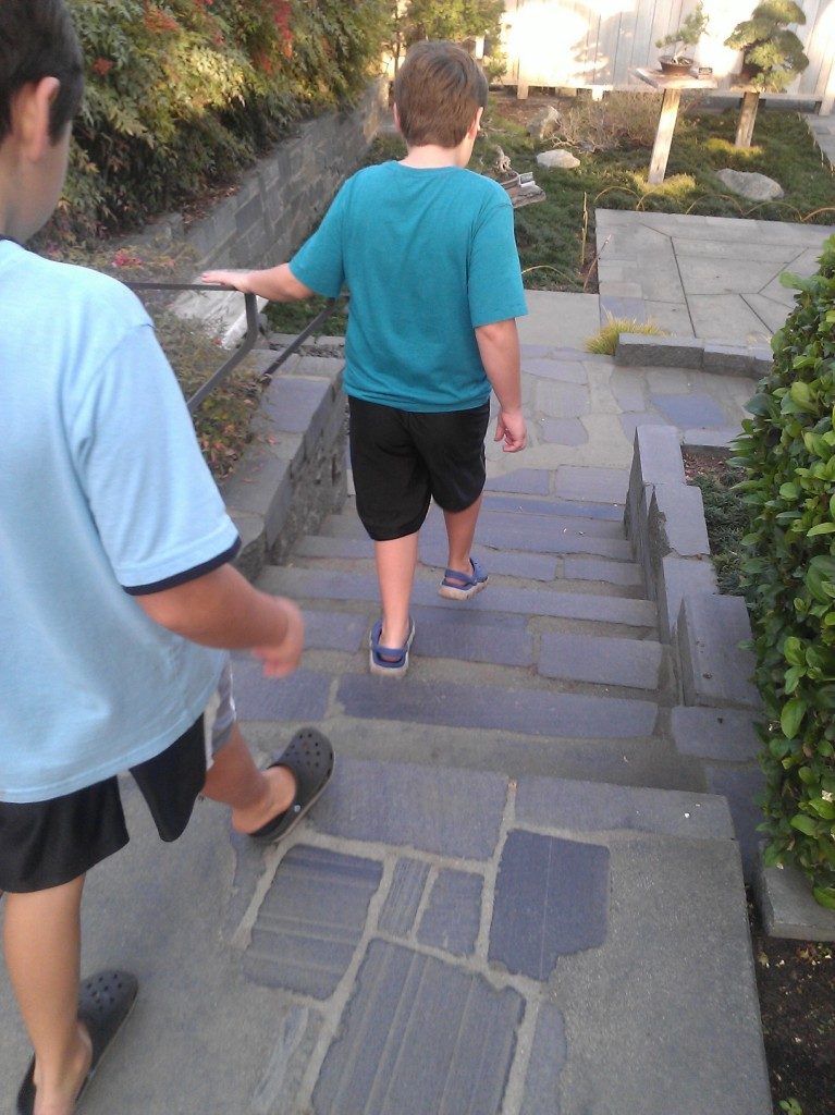 boys on steps