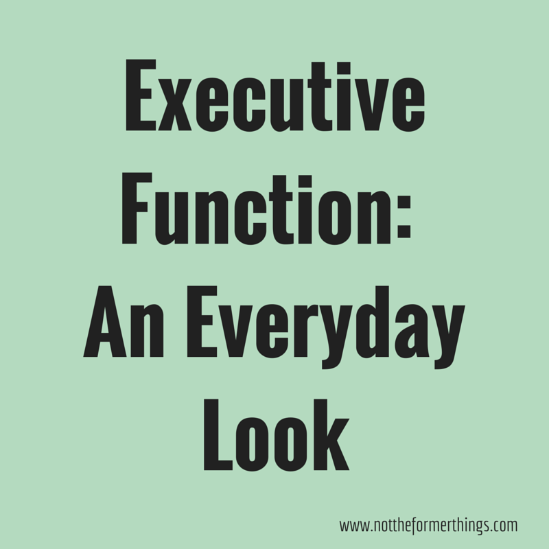 Executive Function_ An Everyday Look