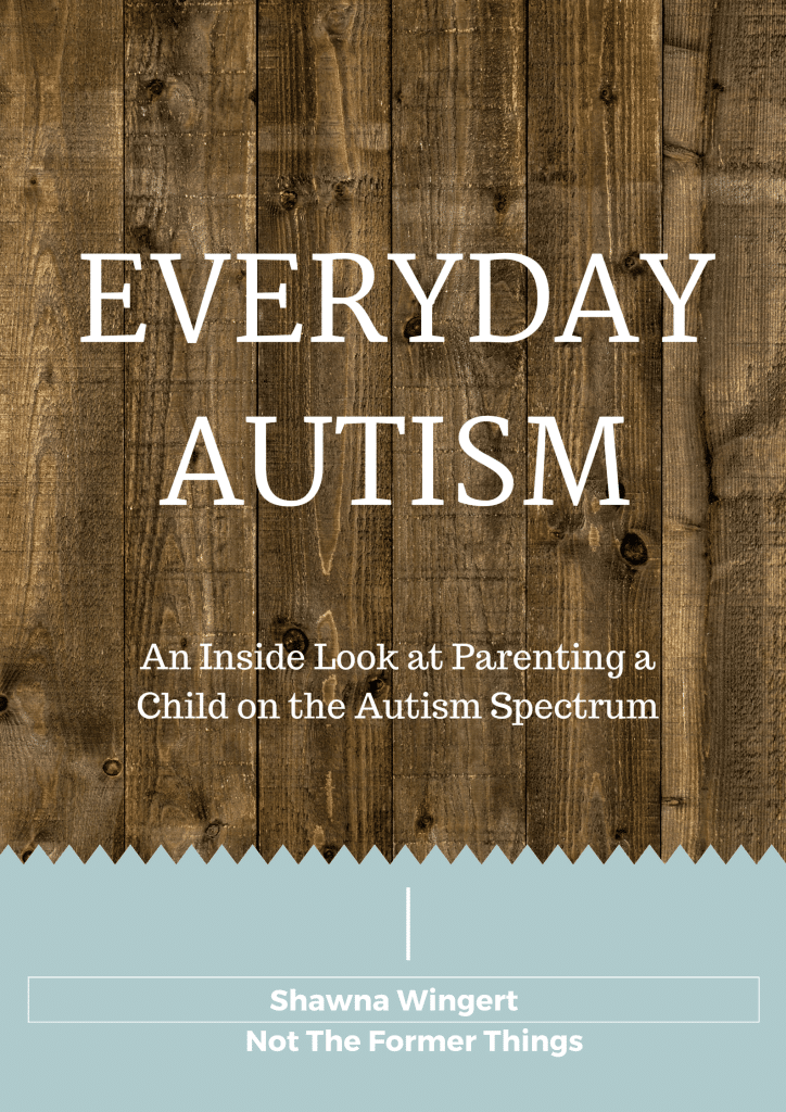 Everyday Autism is one mom's story of the first year post autism diagnosis. #autism #austismmom