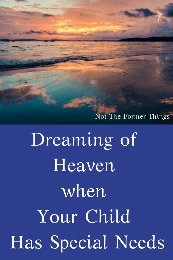 Dreaming Of Heaven When Your Child Has Special Needs What happens when I die? Who will care for my son?