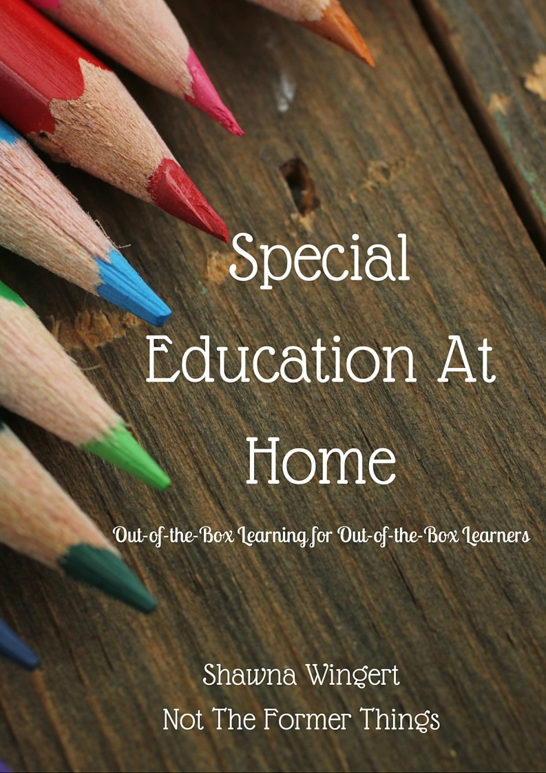 Special Education at Home (2)