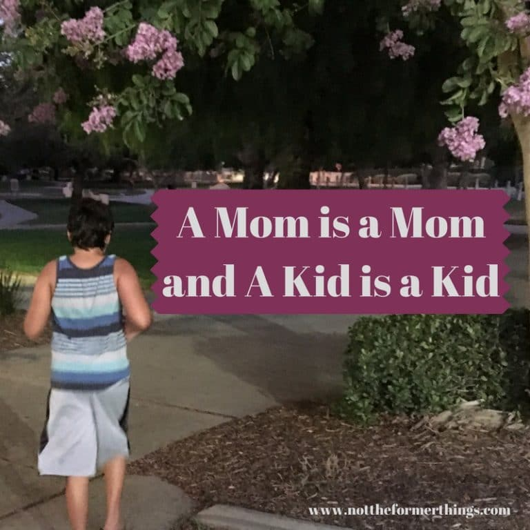 A Mom is a Mom and A Kid is a Kid