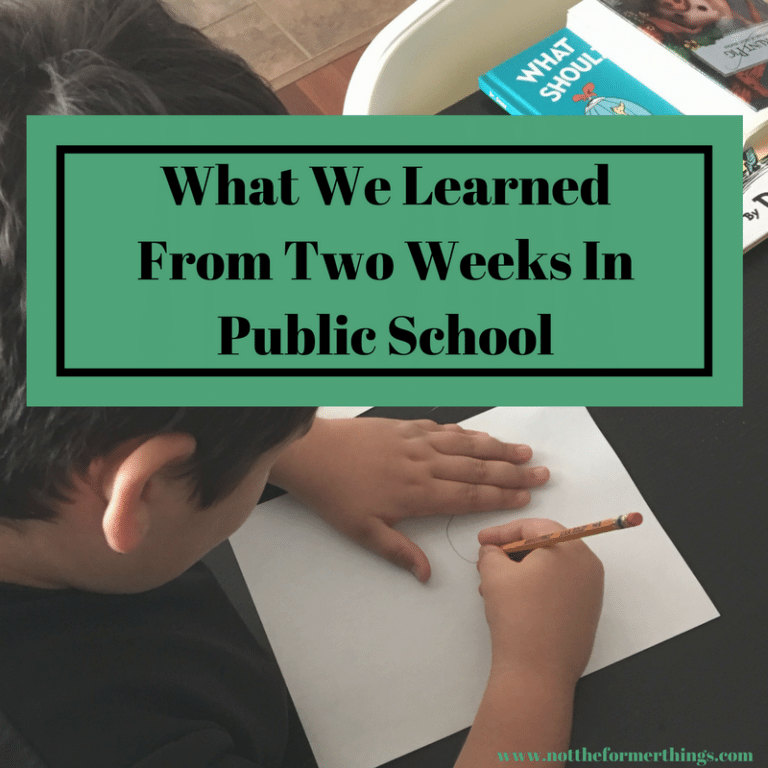 My son spent two weeks in a public program for special needs. Here is what I learned.