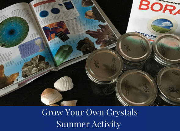 Grow Your Own Crystals Summer Activity