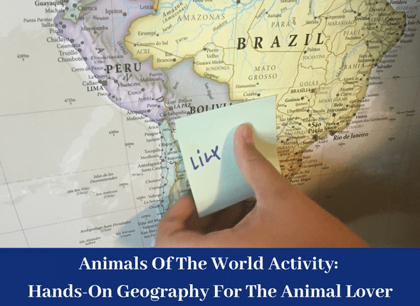 Animals Of The World Activity: Hands-On Geography For The Animal Lover