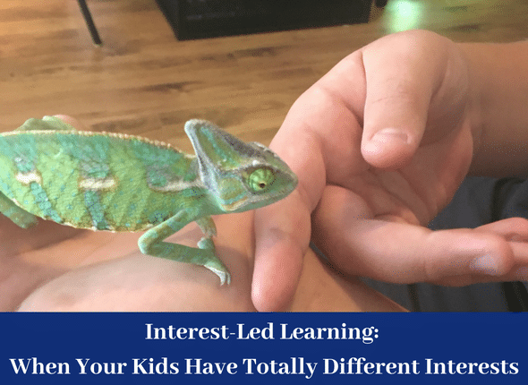 Interest-Led Learning: When Your Kids Have Totally Different Interests