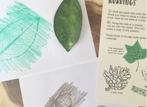 Nature Study For The Older Child (and exhausted mom)