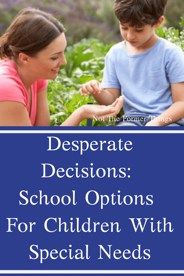 Desperate Decisions: School Options For Children With Special Needs