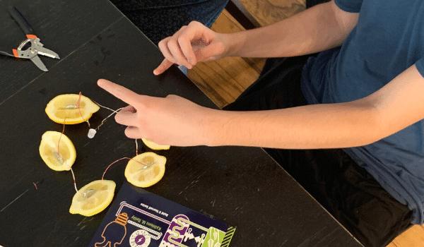 The Best Homeschool Science Curriculum For Hands-On Activities