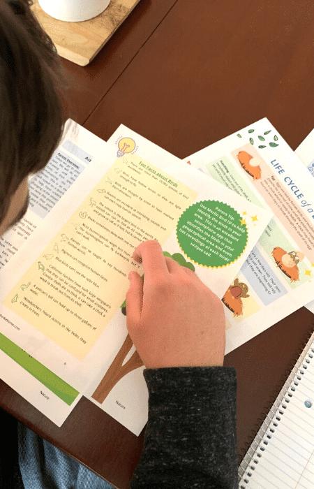 Homeschool Enrichment Program